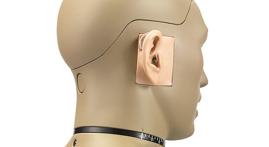 GRAS 45BB-7 Head & Torso for Test of Binaural Hearing Aid, 2-Ch LEMO